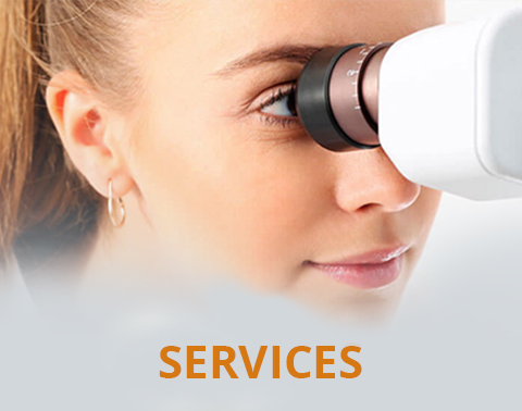 Florida Eyecare Associates - services